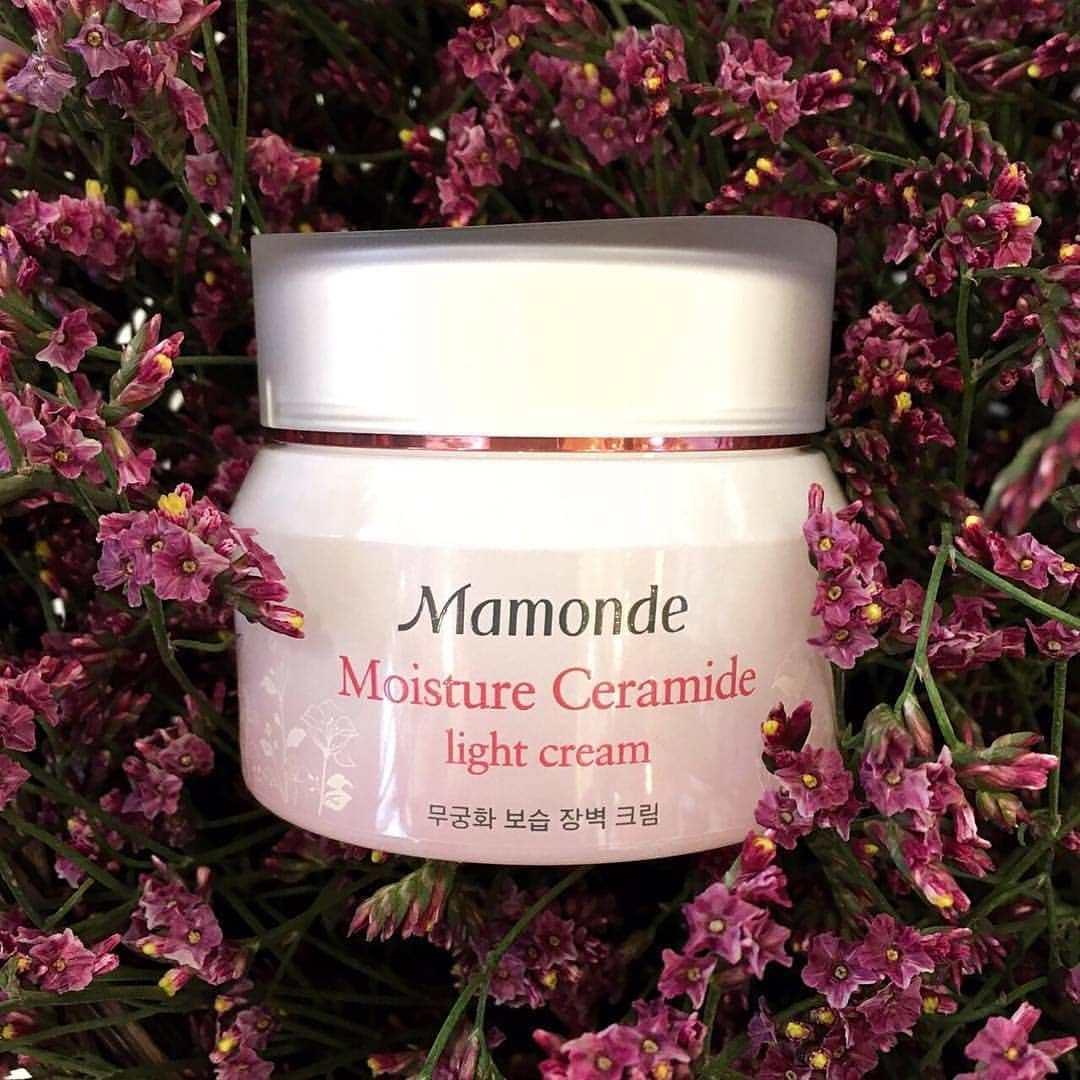 Hình thức hộp kem dưỡng ẩm Mamonde Moisture Ceramide Light Cream đẹp dịu dàng, nữ tính, dễ thương (ảnh: internet).