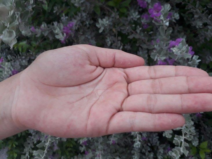 Dưỡng chất dạng lỏng, không màu, mùi thơm dịu nhẹ, khoan khoái (ảnh: BlogAnChoi).