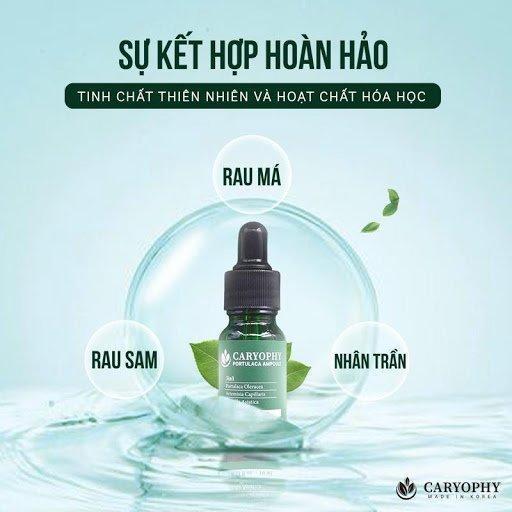 Với 3 thành phần chính là chiết xuất rau sam, lá nhân trần và rau má, serum Caryophy vô cùng lành tính, an toàn cho da. (Ảnh: Internet)